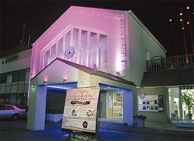 夜のマリーナ、ピンク色に
