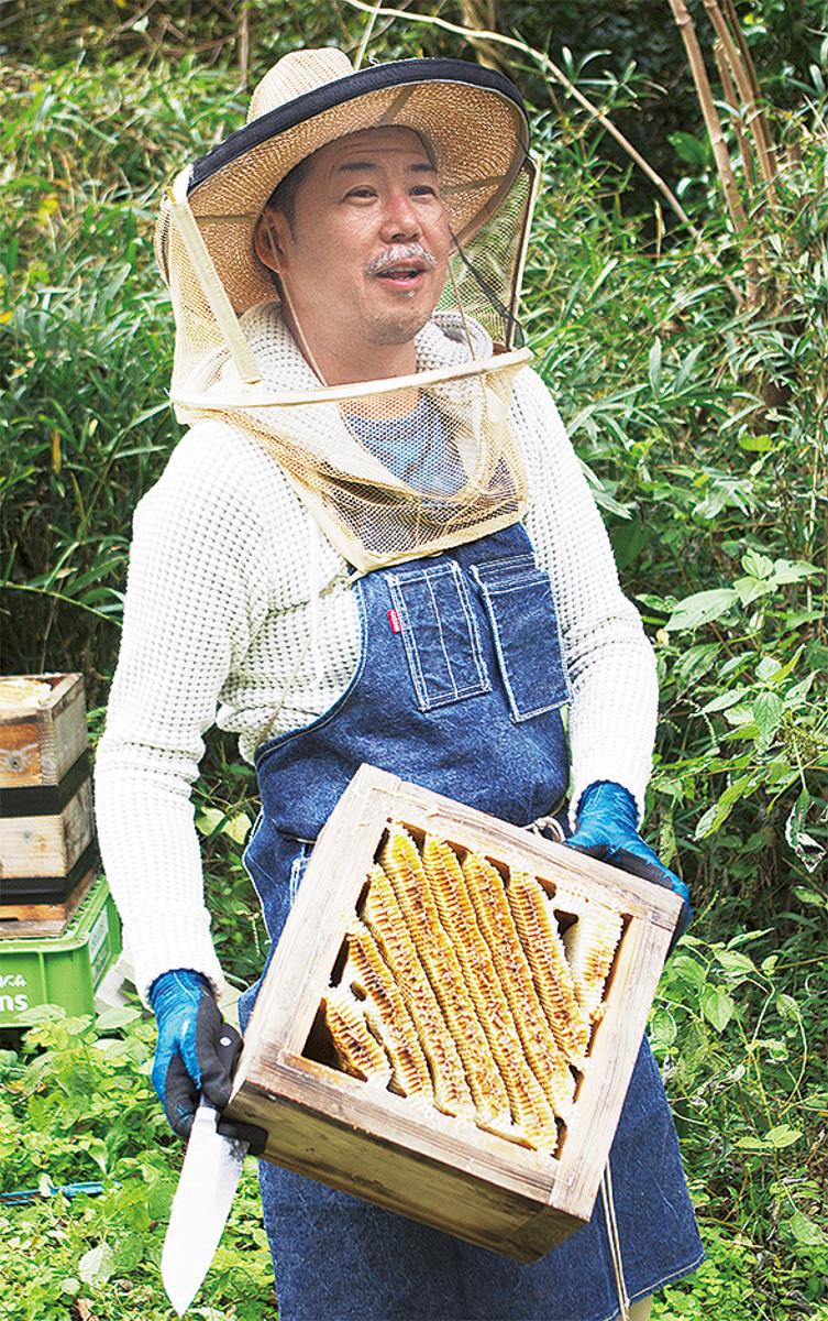 ミツバチは環境のバロメーター