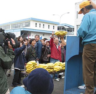 熱気溢れるバナナのせり。お得商品も多数あり