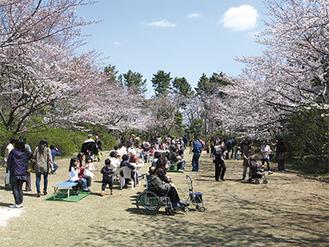 桜エリアでは多くの人が花見を楽しんだ