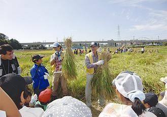 稲の刈り取りについて説明するライオンズメンバー