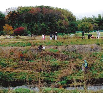 当日は約40人が参加、目久尻川両岸でごみ拾いが行われた