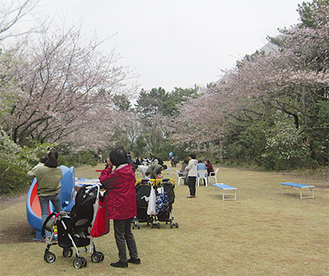桜のエリアで花見をする来場者