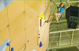 ロープを使って登る「リード」(写真提供=東京都山岳連盟)