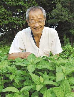 パーキンソン病の治療を続けながら、藍を栽培する塩沢さん