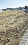 公園整備中の今田遊水地