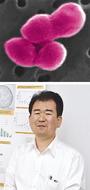 新種の微生物を発見、命名