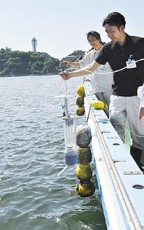 水質を調査する市の職員