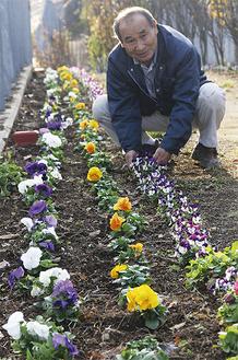 連なるように咲く花々と、苗を植えた尾上代表