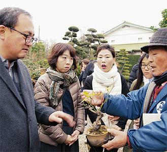 日本文化の「盆栽」の魅力も伝えた