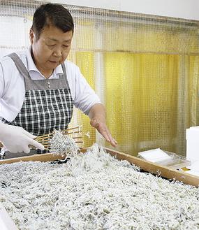 釜揚げしらすを熊手でほぐす葉山さん。商品はパック詰めし、店頭に並ぶ