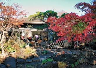 紅葉など草木に囲まれ風情漂うカフェ「立小路」