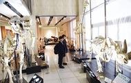 日本初「骨の博物館」