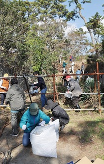 避難路の雑草や枝を取り除く住民ら