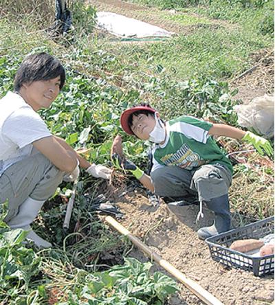 休耕地を管理サポート付き体験農園に!
