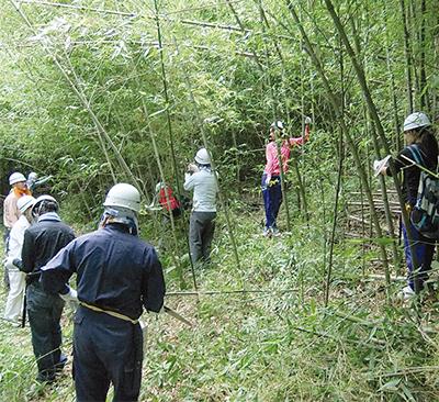 竹を切って森林保護