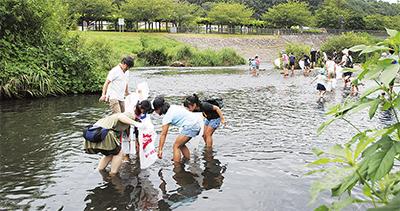 総勢250人が川清掃