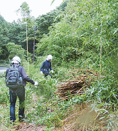 森林ボラで環境学ぶ