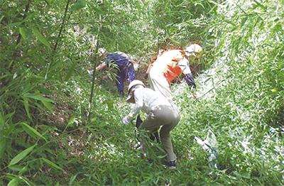 24人が森林ボラで汗流す
