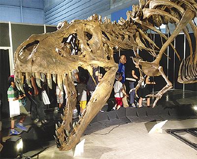 恐竜展へ課外授業