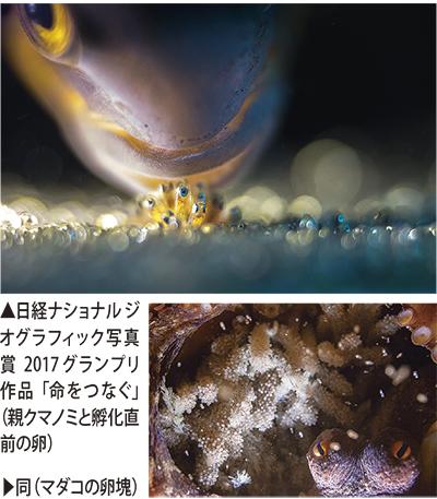 粕谷徹さん作品 最高賞(グランプリ)に
