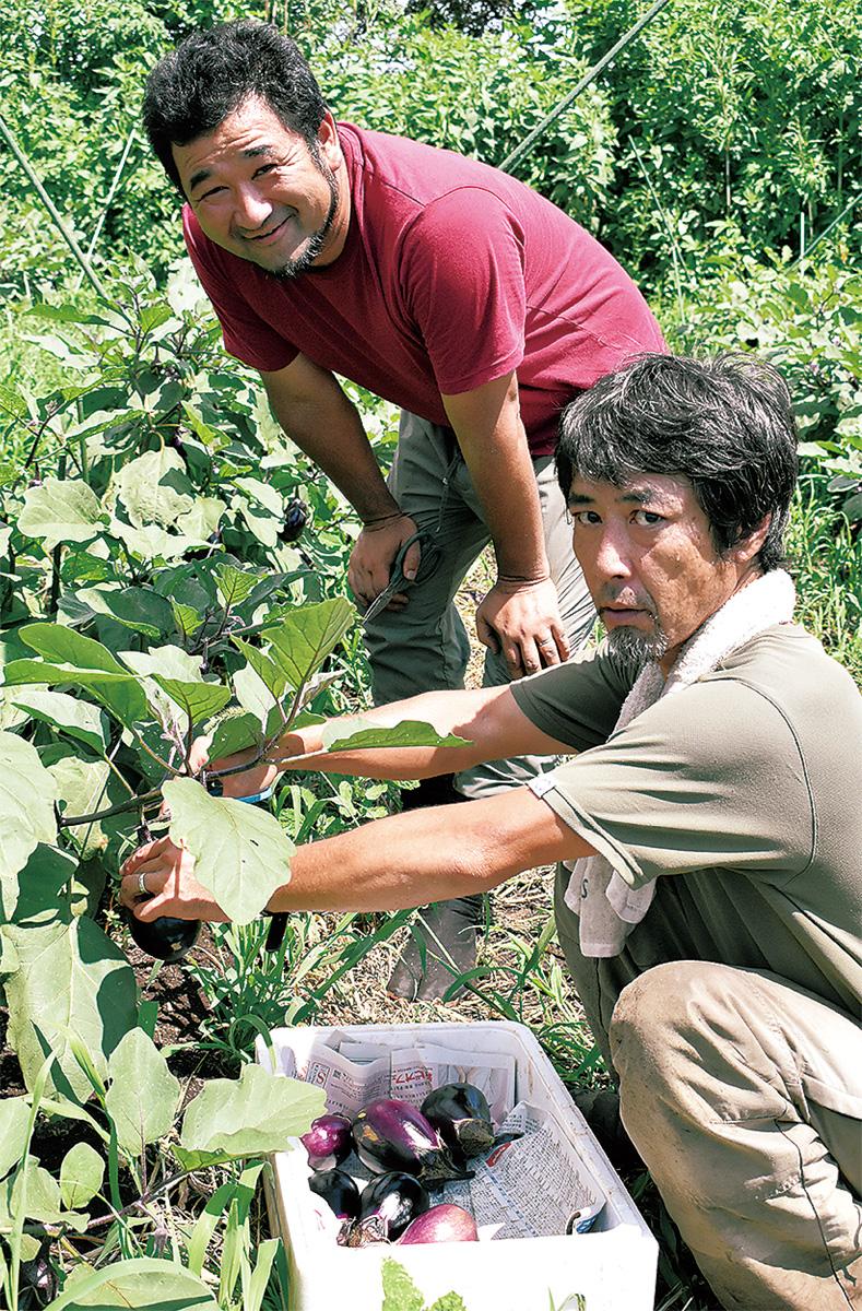 障害者の就労、農業で支援