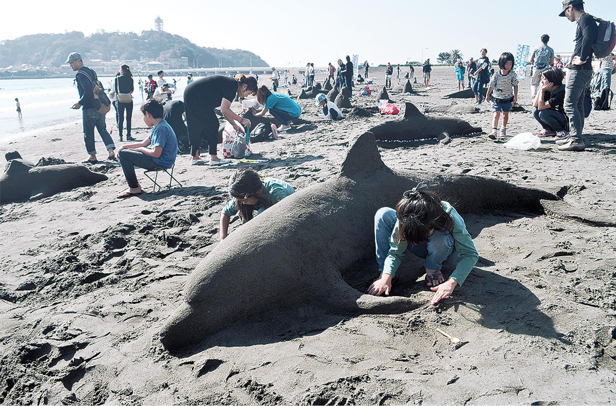 本物そっくり砂イルカ完成