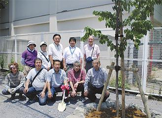 植樹した桜とメンバーたち