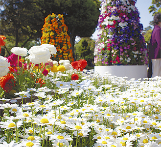 苑内を彩る花々(2013年撮影・江ノ島電鉄(株)提供)