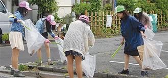 ゴミ拾いを行う学生
