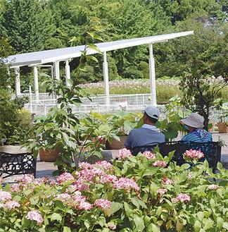 約5700種を育成する園内は地域住民の憩いの場となっている
