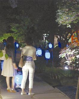 提灯を手に夜の参道を散策