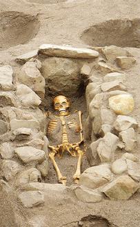 出土した箱式石棺墓(提供:文化財課)