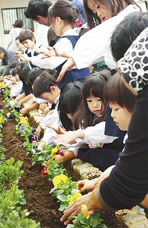 1歳から5歳児クラスの園児が植えた