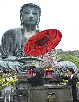 大仏像に献茶する千宗室家元