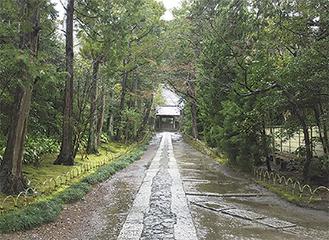 壽福寺の参道