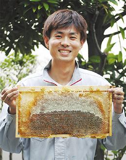 蜜がたっぷり入った巣箱を手にする