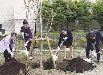 木の根元に土をかける参加者
