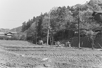 「瓜ヶ谷の田んぼ」(写真提供:実行委員会)