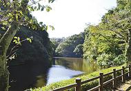 鎌倉にある湖とその歴史