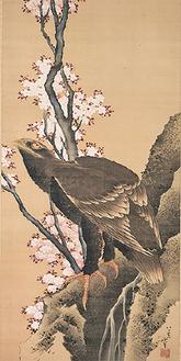 北斎の「桜に鷲図」などを展示