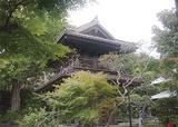 「鎌倉めぐり」と徳川将軍