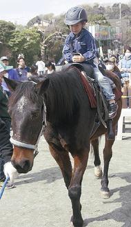 流鏑馬でも活躍する馬・秋月に乗って楽しんだ