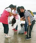 作業所の利用者による海藻回収の様子
