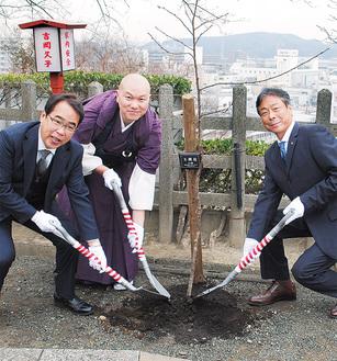苗に土をかける松樹監寺(中央)、田中会長(右)