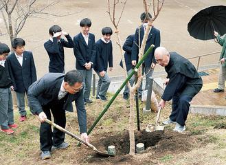 第二中での植樹