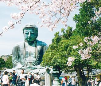 高柳会長が鎌倉大仏殿高徳院で撮影した一枚