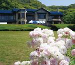 作品から名をとり『春の雪』と名付けられたバラと松枝侯爵家の別荘のモデルとなった鎌倉文学館