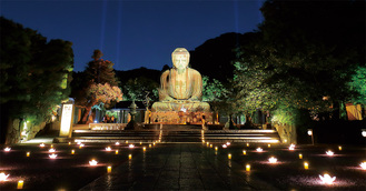 金色に輝く鎌倉大仏殿高徳院(昨年)