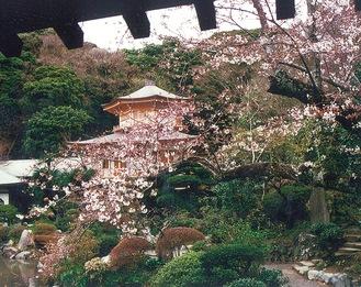 光明寺 庭園=高柳さん提供